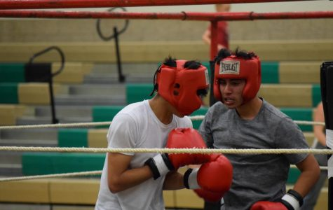 Students face off in boxing matches