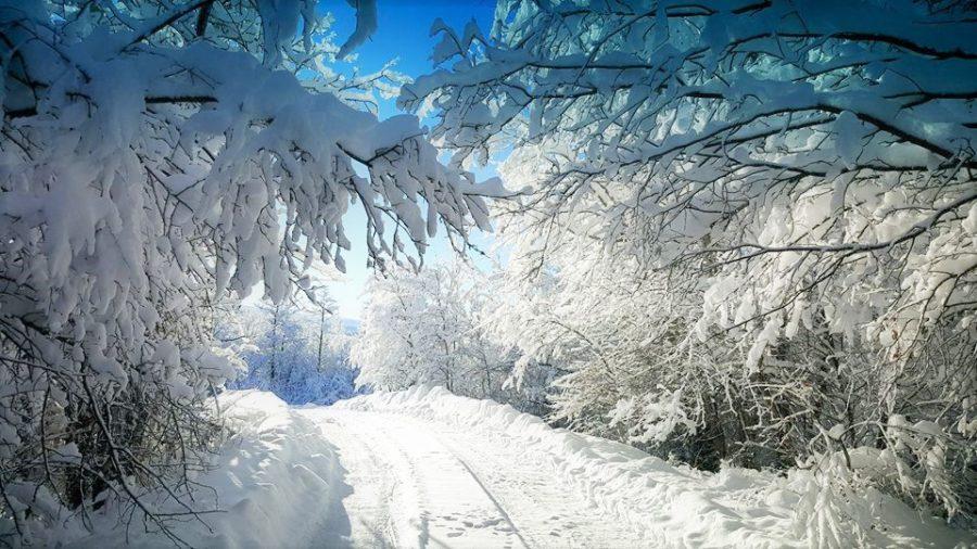 MChristensen+Winter+in+Idaho+5